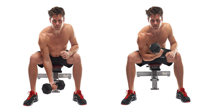 Concentrated Biceps Lift